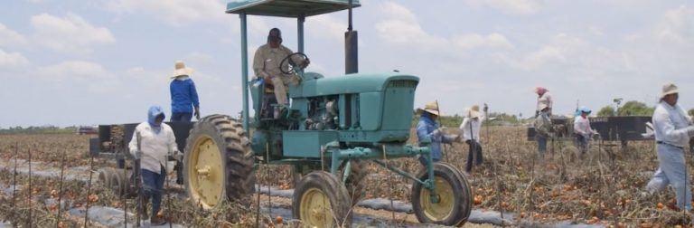 Farmworkers on a tractor