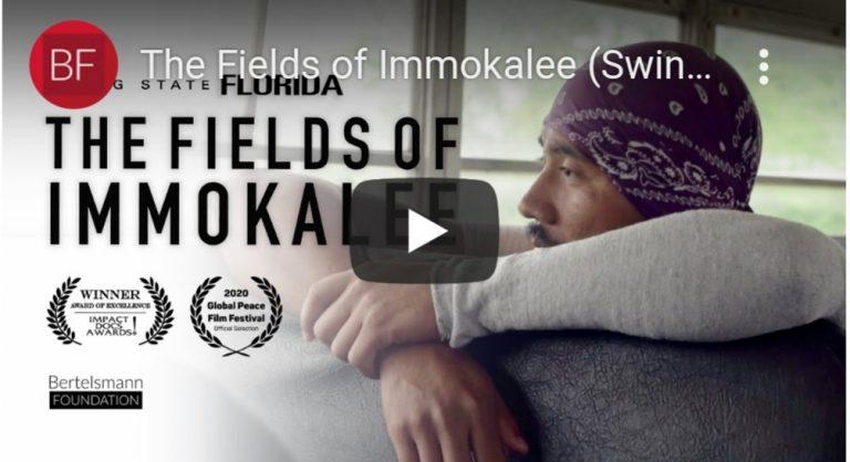 The fields of Immokalee documentary
